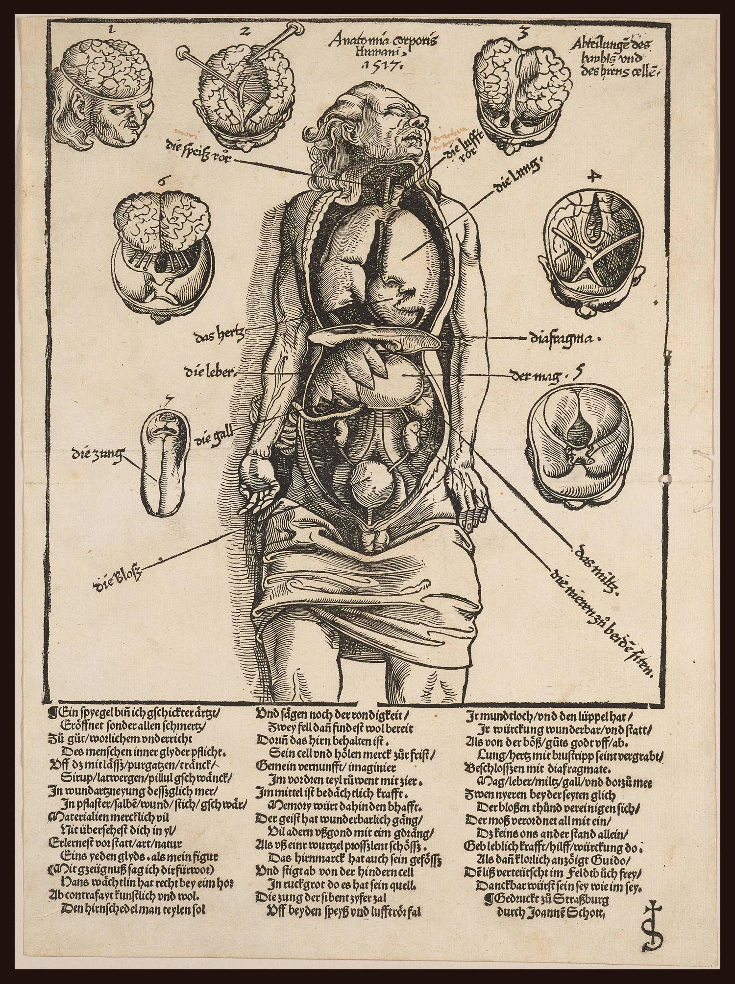 The Art and Science of Healing | Wendelin Hock